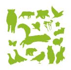 Illustrator:Animal