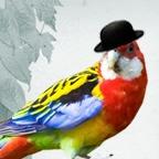 デザイナー:クロノの作品発表のクリエイターギャラリー