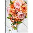 ライフスタイル_結婚_54でウェディングカード、DM/ポストカードを作る