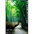 自然風景_竹_1で暑中見舞い、DM/ポストカードを作る